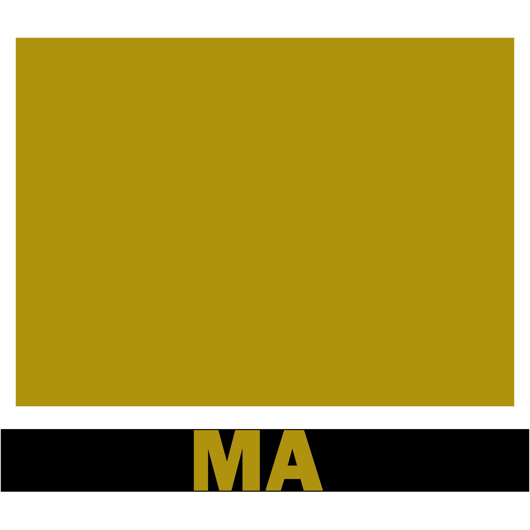 Maxmatech